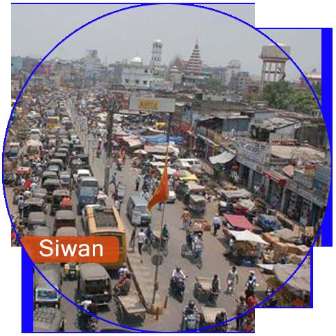 Web & Digital Solution Company in Siwan