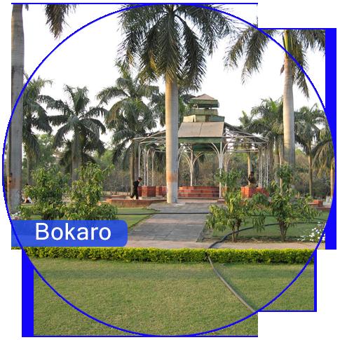 Web & Digital Solution Company in Bokaro