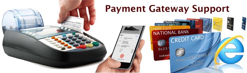 Online Payment Gateway Services in Patna - Patron Info Tech